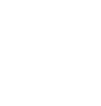 The Wilton Group LLC - Executive Search Services